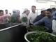 বিটিআরআই কারখানায় ২০১৭ সালের চা প্রস্তুতকরণের শুভ উদ্বোধন